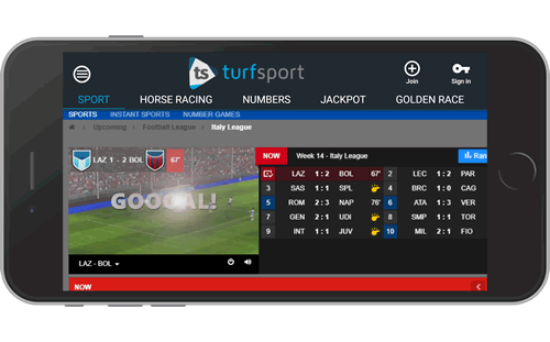 Virtual Sport Betting Software